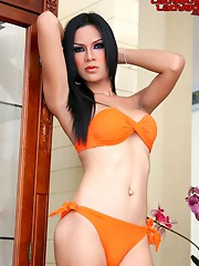 Cute ladyboy strips