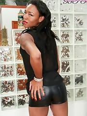 Horny black T-girl